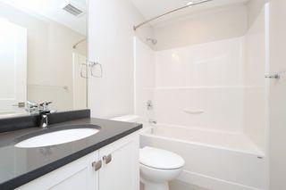 Photo 16: 1705 Haultain Street in VICTORIA: Vi Jubilee Single Family Detached for sale (Victoria)  : MLS®# 380899