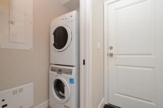 Photo 20: 1705 Haultain St in VICTORIA: Vi Jubilee House for sale (Victoria)  : MLS®# 765326