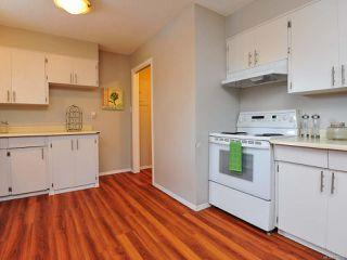 Photo 3: 4812 N Island Hwy in COURTENAY: CV Courtenay City House for sale (Comox Valley)  : MLS®# 779950