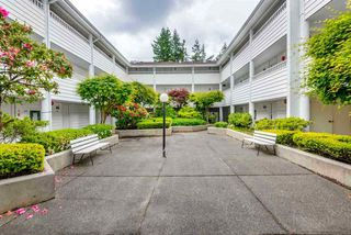 "Photo 2: 303 707 EIGHTH Street in New Westminster: Uptown NW Condo for sale in ""THE DIPLOMAT"" : MLS®# R2246901"