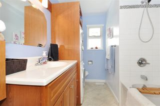 Photo 10: 3145 RALEIGH Street in Port Coquitlam: Central Pt Coquitlam House for sale : MLS®# R2255982