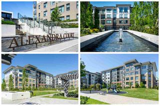 """Photo 19: 402 9311 ALEXANDRA Road in Richmond: West Cambie Condo for sale in """"ALEXANDRA COURT"""" : MLS®# R2266613"""