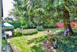 Photo 7: 6315 195B Street in Surrey: Clayton House for sale (Cloverdale)  : MLS®# R2293404