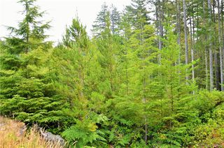 Photo 6: LOT B Leda Rd in SOOKE: Sk East Sooke Land for sale (Sooke)  : MLS®# 795496