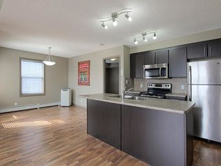 Main Photo: #411 105 AMBLESIDE Drive in Edmonton: Zone 56 Condo for sale : MLS®# E4127847