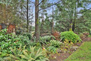 "Photo 18: 14 101 PARKSIDE Drive in Port Moody: Heritage Mountain Townhouse for sale in ""TREETOPS"" : MLS®# R2336738"