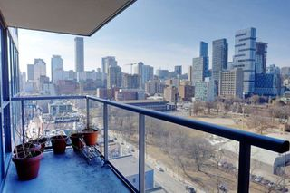 Photo 4: Lph13 320 E Richmond Street in Toronto: Moss Park Condo for lease (Toronto C08)  : MLS®# C4400863