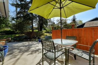 Photo 18: 3978 Hopkins Dr in VICTORIA: SE Maplewood House for sale (Saanich East)  : MLS®# 810909