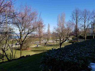 "Photo 2: 119 5500 LYNAS Lane in Richmond: Riverdale RI Condo for sale in ""THE HAMPTONS"" : MLS®# R2367068"