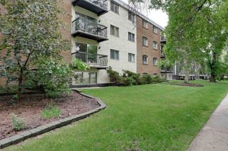 Photo 2: 304 10165 113 Street in Edmonton: Zone 12 Condo for sale : MLS®# E4163099