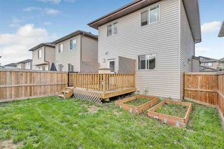Photo 12: 1133 177A Street in Edmonton: Zone 56 House for sale : MLS®# E4164010
