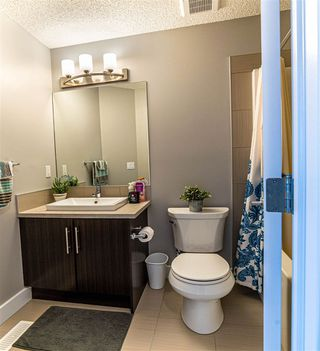 Photo 14: 2136 24 ST in Edmonton: Zone 30 Attached Home for sale : MLS®# E4172506