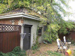 Photo 13: 11440 97 Street in Edmonton: Zone 08 House for sale : MLS®# E4174741