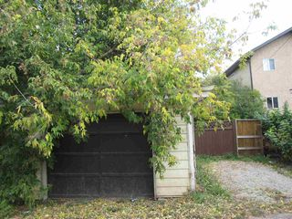 Photo 12: 11440 97 Street in Edmonton: Zone 08 House for sale : MLS®# E4174741