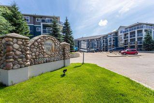 Photo 31: 312 16035 132 Street in Edmonton: Zone 27 Condo for sale : MLS®# E4205640