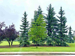 Photo 23: 104 2545 116 Street in Edmonton: Zone 16 Condo for sale : MLS®# E4209383