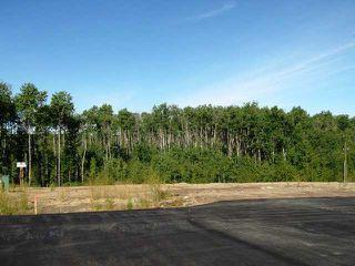 Photo 4: Lot 10 Whitetail Ridge Estates: Rural Bonnyville M.D. Rural Land/Vacant Lot for sale : MLS®# E3394446
