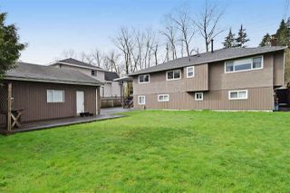 Photo 18: 3220 PHILLIPS Avenue in Burnaby: Government Road House for sale (Burnaby North)  : MLS®# R2050193