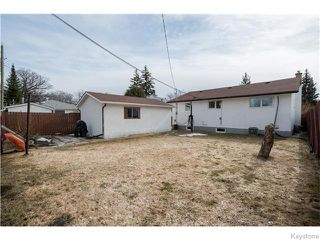 Photo 16: 295 Cheriton Avenue in Winnipeg: North Kildonan Residential for sale (North East Winnipeg)  : MLS®# 1607580
