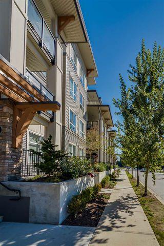 "Photo 15: 310 12409 HARRIS Road in Pitt Meadows: Mid Meadows Condo for sale in ""LIV42"" : MLS®# R2107610"