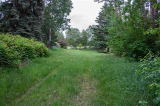 Photo 6: 730 Lakeside Drive: Rural Parkland County Rural Land/Vacant Lot for sale : MLS®# E4090138