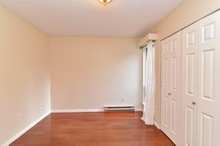 Photo 15: 205 1210 PACIFIC STREET in Coquitlam: North Coquitlam Condo for sale : MLS®# R2235055