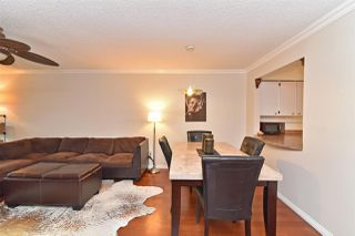 Photo 7: 205 1210 PACIFIC STREET in Coquitlam: North Coquitlam Condo for sale : MLS®# R2235055