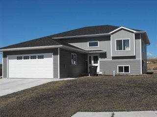 Photo 1: 5102 60 Avenue: Elk Point House for sale : MLS®# E4100946