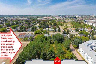 Photo 29: 205 9820 165 Street in Edmonton: Zone 22 Condo for sale : MLS®# E4115650