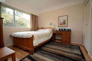 Photo 14: 3402 Henderson Rd in VICTORIA: OB Henderson House for sale (Oak Bay)  : MLS®# 696340