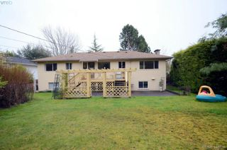Photo 20: 3402 Henderson Rd in VICTORIA: OB Henderson House for sale (Oak Bay)  : MLS®# 696340