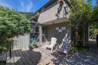 Photo 18: 43805 6TH Street in Cultus Lake: Lindell Beach House for sale : MLS®# R2288213