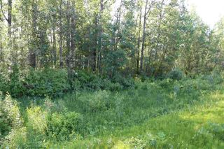 Main Photo: 110 11312 594: Rural St. Paul County Rural Land/Vacant Lot for sale : MLS®# E4123854