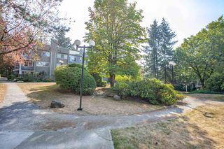 """Photo 18: 437 3364 MARQUETTE Crescent in Vancouver: Champlain Heights Condo for sale in """"CHAMPLAIN RIDGE"""" (Vancouver East)  : MLS®# R2304679"""