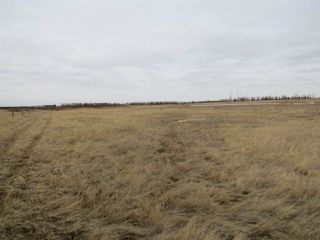 Photo 5: RR 124 TWP 442: Sedgewick Land Commercial for sale : MLS®# E4149401