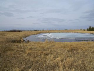 Photo 10: RR 124 TWP 442: Sedgewick Land Commercial for sale : MLS®# E4149401