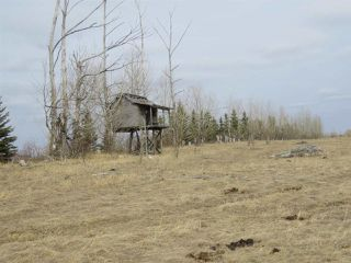 Photo 7: RR 124 TWP 442: Sedgewick Land Commercial for sale : MLS®# E4149401