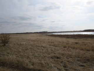 Photo 8: RR 124 TWP 442: Sedgewick Land Commercial for sale : MLS®# E4149401