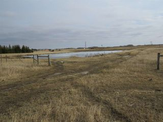 Photo 9: RR 124 TWP 442: Sedgewick Land Commercial for sale : MLS®# E4149401