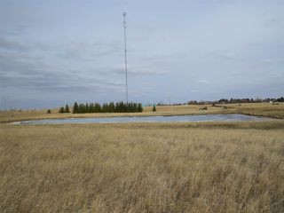 Photo 12: RR 124 TWP 442: Sedgewick Land Commercial for sale : MLS®# E4149401