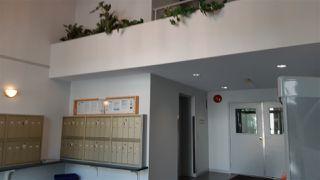 "Photo 15: 112 33668 KING Road in Abbotsford: Poplar Condo for sale in ""College Park"" : MLS®# R2376238"