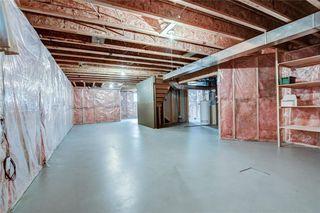 Photo 38: 57 CITADEL Garden NW in Calgary: Citadel Detached for sale : MLS®# C4255381