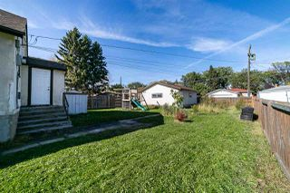 Photo 13: 9730 66 Avenue in Edmonton: Zone 17 House for sale : MLS®# E4175786