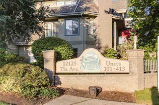 Main Photo: 217 12125 75A Avenue in Surrey: West Newton Condo for sale : MLS®# R2417395