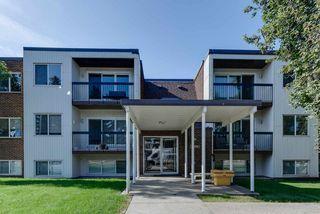 Main Photo: 206 11455 41 Avenue in Edmonton: Zone 16 Condo for sale : MLS®# E4209879