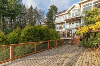 "Photo 35: 14112 MARINE Drive: White Rock House for sale in ""Waterfront Marine Drives Golden Mile"" (South Surrey White Rock)  : MLS®# R2517454"
