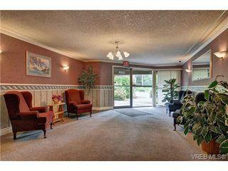 Photo 20: 308 1525 Hillside Avenue in VICTORIA: Vi Oaklands Condo Apartment for sale (Victoria)  : MLS®# 353863