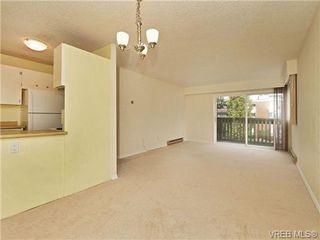 Photo 4: 308 1525 Hillside Ave in VICTORIA: Vi Oaklands Condo Apartment for sale (Victoria)  : MLS®# 707337