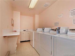 Photo 17: 308 1525 Hillside Avenue in VICTORIA: Vi Oaklands Condo Apartment for sale (Victoria)  : MLS®# 353863