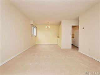 Photo 3: 308 1525 Hillside Ave in VICTORIA: Vi Oaklands Condo Apartment for sale (Victoria)  : MLS®# 707337